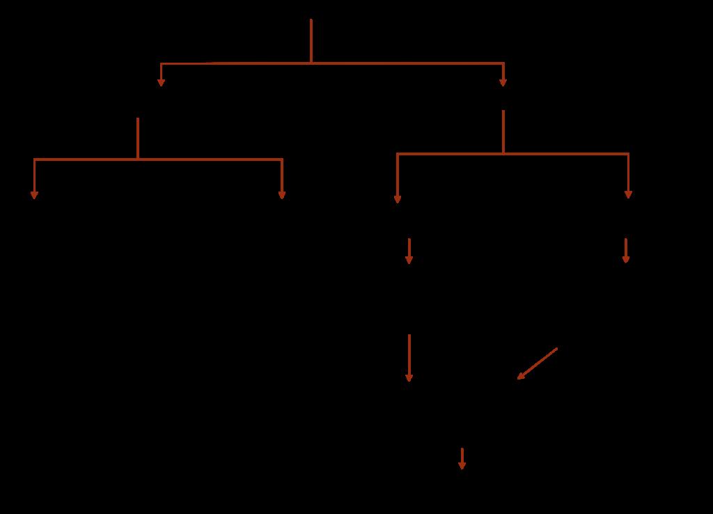 Iron Makin & Steel Making Process